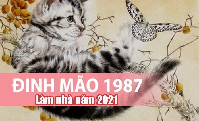 tuổi Đinh Mão năm 2021